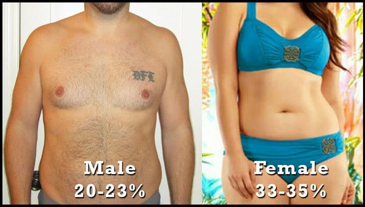body-fat-percentage-male-and-female