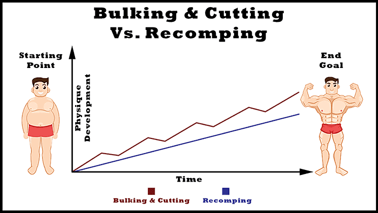 bulking-and-cutting-vs-body-recomposition