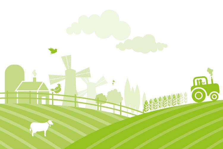 performance ambientali delle aziende vitivinicole