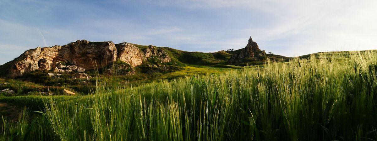 IRPAIS Sicilia, Paesaggio Agricoltura Turismo Beni Culturali