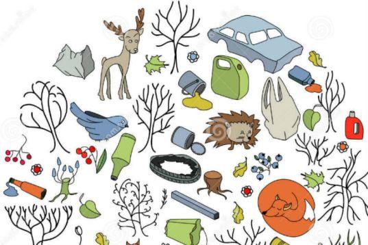 misure forestali nello sviluppo rurale, misure forestali, sviluppo rurale