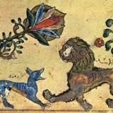 Conte Kabyle: Tamacahut  N mḤend uccen/L'histoire de m'hend le chacal (Kabyle & Français)