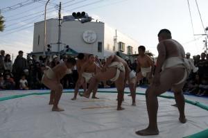 Iruma Mando Festival わんぱく力士の稽古の様子。