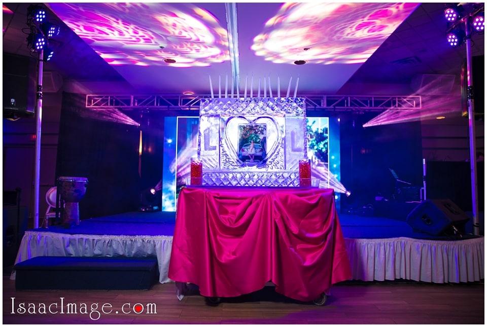 Toronto Top Bat Mitzvah Party Loren_4302.jpg