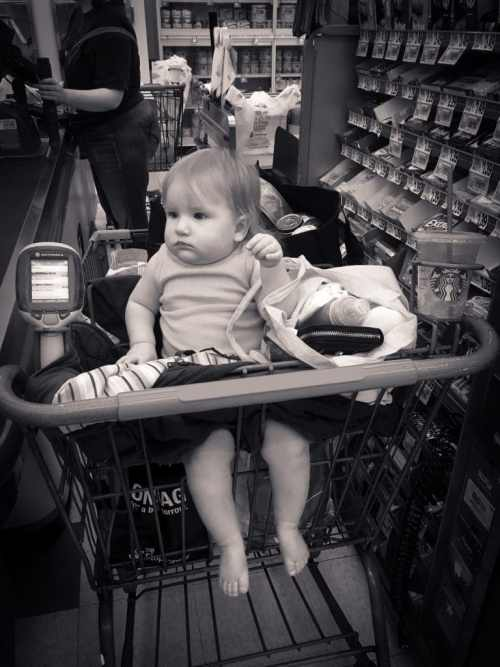 Shopping with Mom - first day sitting in the basket.
