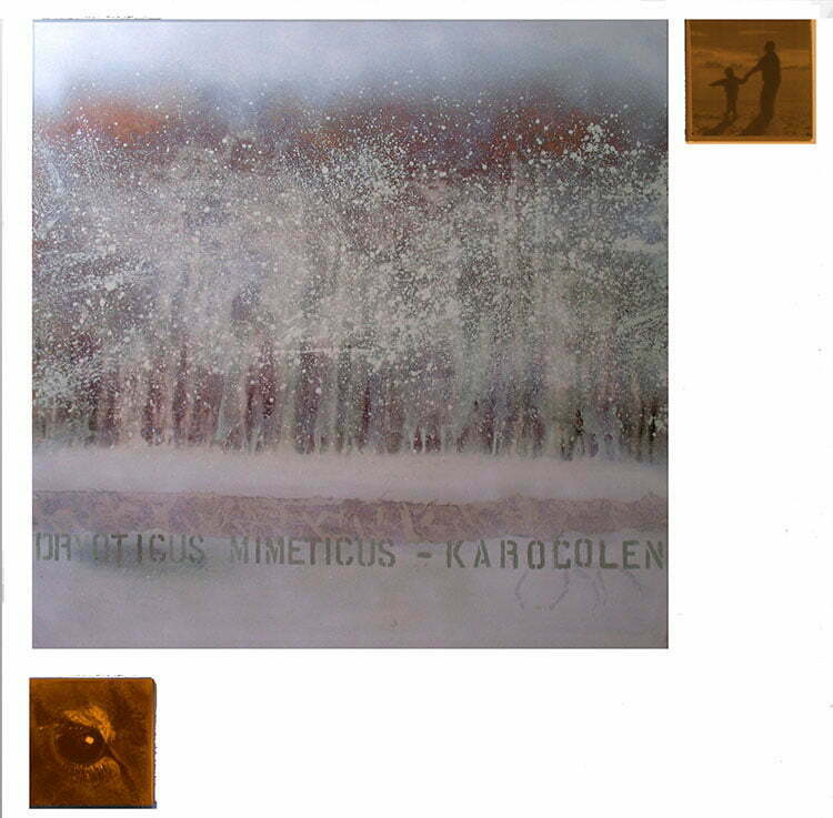 La forêt givrée - N°5 - 112x112cm - technique mixte - 2009 - collection particulière.