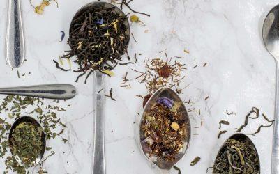 Quels sont les bienfaits du thé et de l'infusion ?