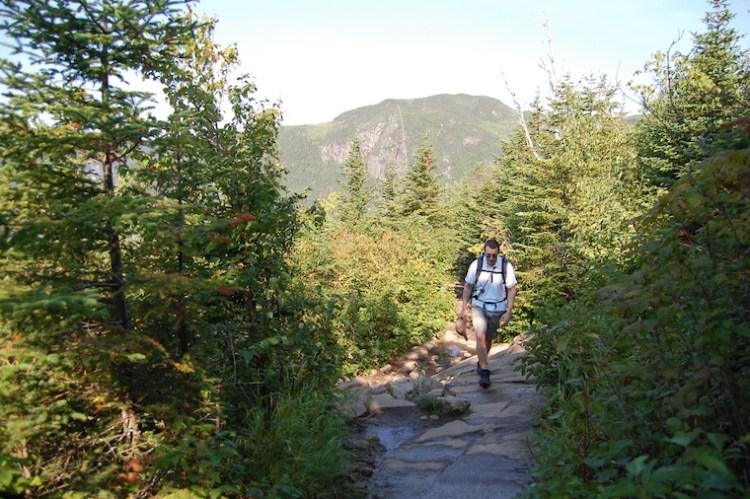 Un marcheur, concentré, marche en forêt l'été.