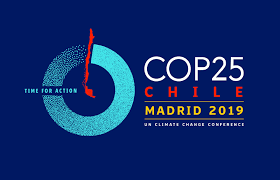 logo COP25