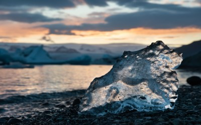 ¿Pueden unas bacterias acelerar la subida del nivel del mar?