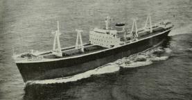 Το «Miss Chandris», υπό την διαχείριση του Οίκου Χανδρή, είχε κατασκευαστεί στα βρετανικά ναυπηγεία William Doxford & Sons Ltd και είχε υψώσει την ελληνική σημαία. Η χωρητικότητά του ήταν 14.550 dwt και διέθετε κλειστό shelter deck. To μήκος του έφτανε τα 155,4 μέτρα, το πλάτος του τα 20,4 και το ύψος μέχρι του ανώτατου καταστρώματος τα 12,4 μέτρα. Η υπηρεσιακή ταχύτητα του «Miss Chandris» άγγιζε τα 16 μίλια, ενώ κατά τις δοκιμές έφτασε και τα 18 μίλια. [Ναυτικά Χρονικά, αρ. 578/337, 1 Ιουλίου 1959]