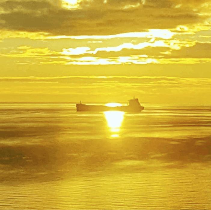 4. Golden sea. Credits to Spyros Giannakopoulos