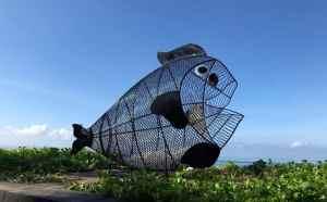Ένα γιγάντιο ψάρι σώζει τις θάλασσες από τα πλαστικά
