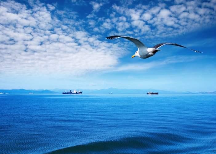 Η HELMEPA συμβάλλει στην απανθρακοποίηση της ναυτιλίας