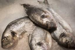 Fischtheke von Dallmayr Bar & Grill - ISARBLOG
