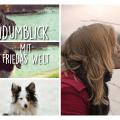Der Hundumblick: Friedas Welt