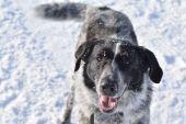 Unterwegs im Winterwunderland bei Habach: Frisch schneegebadet