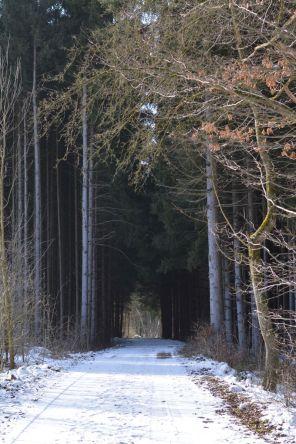 Ammersee Höhenweg