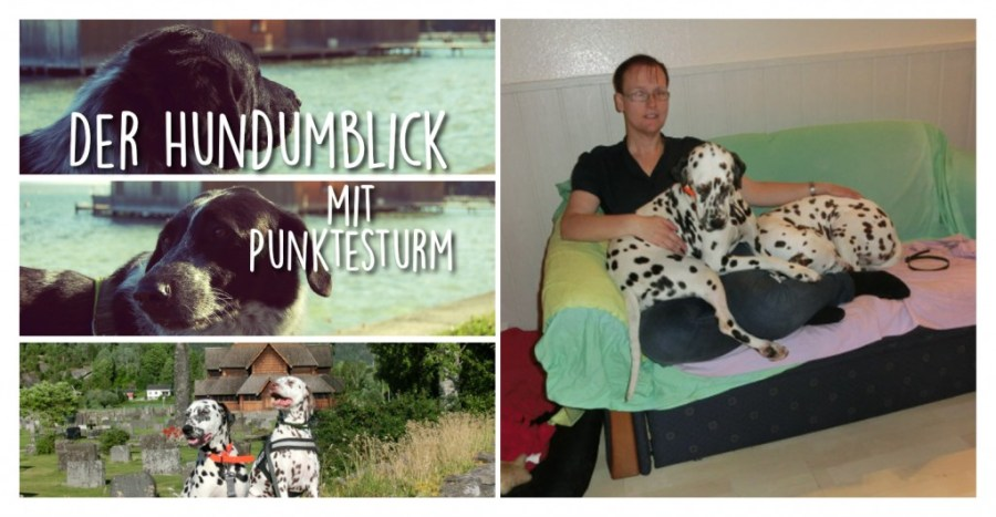 Der Hundumllick: 6 Fragen an Simone von Punktesturm