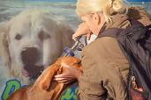 Hundewaschanlage in De Krim