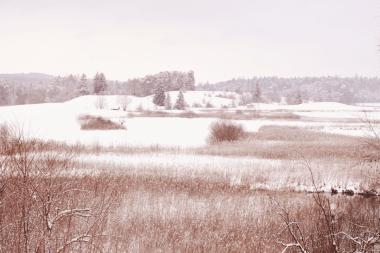 Landschaft rund um die Osterseen