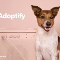 Aufgestöbert: Adoptify