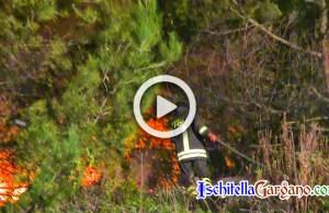 Incendio Isola Varano