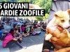Guardie Zoofile