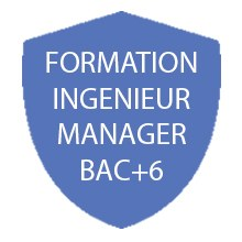 Formation BAC+6