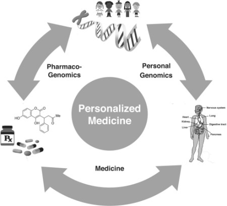 Personalized_Medicine_Wheel