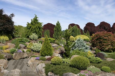 Jean Iseli Memorial Garden