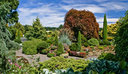 The sunny, May garden