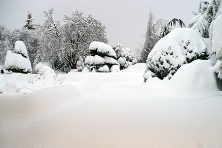 The second wave of snow