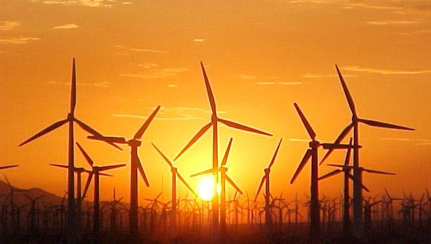 windmill-farm