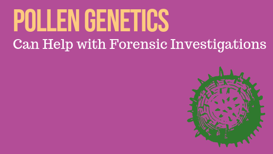 Pollen Genetics Can Help with Forensics Investigations