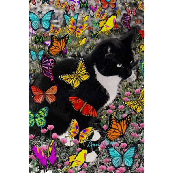 Freckles the Tux Cat in Butterflies I 3'x5′ Area Rug | DianeClancy @ CafePress