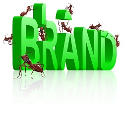 ant learning future brand