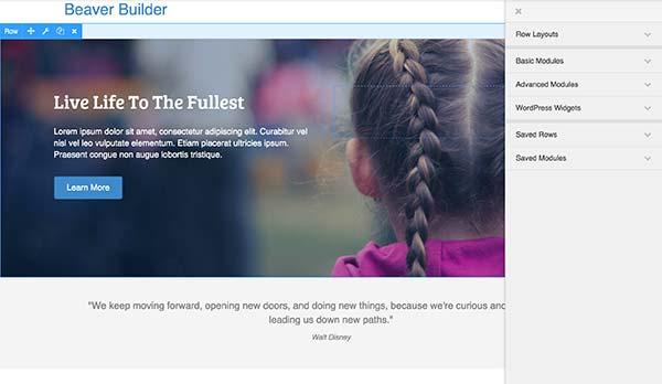 Interfaccia utente di Beaver Builder