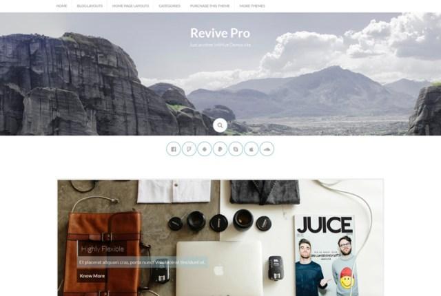 revive-wordpress-theme
