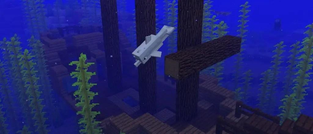 Mincraft Update Aquatic
