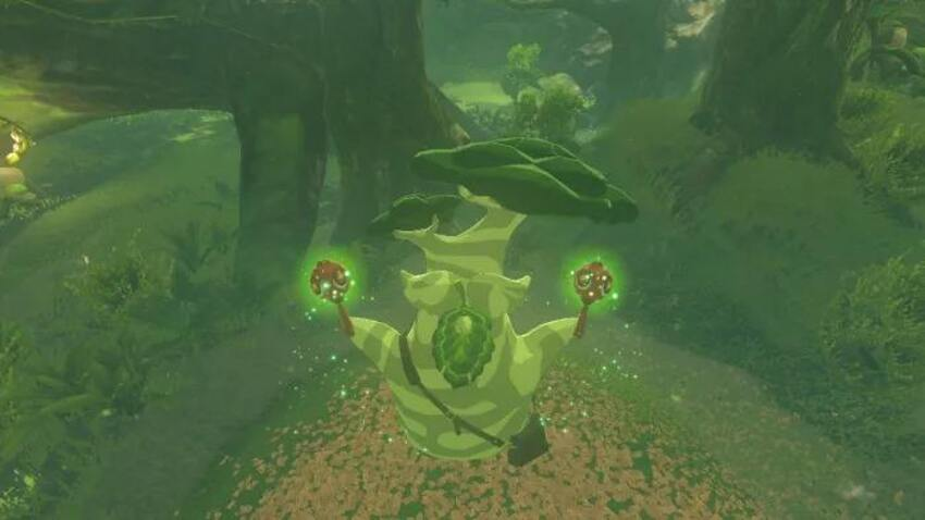 How to increase inventory space in Breath of the Wild