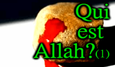 288 Qui est Allah ? 1/2