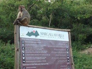 Margalla Hills national park Islamabad