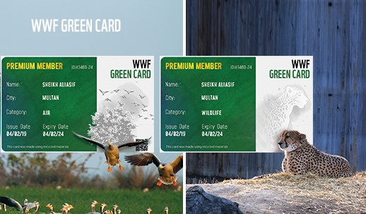 WWF Green Card initiative launched to create environmental awareness