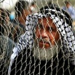Photo of Did Egypt Really Open Rafah Crossing?