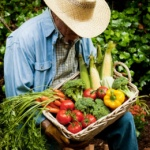 Photo of Local Bounties, Sustainable Harvests