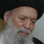sayyid_fadlullah_returns_ii