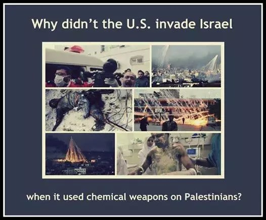 Image result for israels chemical weapons