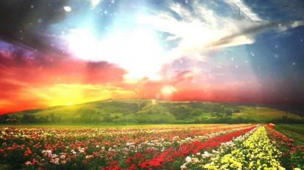 Seeking Jannah (Paradise) - IslamiCity