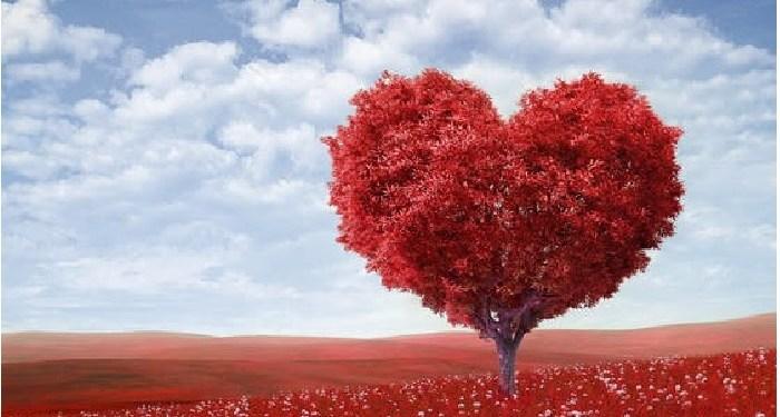 hati, hujan, Romantisme Rasulullah Bersama Aisyah